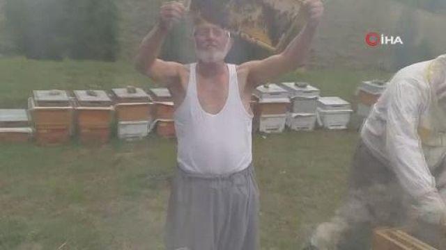Gömleğini çıkarıp arıları seven yaşlı adam şaşırttı
