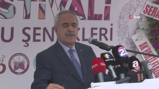 Elazığ'da 15. Bağ Bozumu ve Orcik Festivali başladı