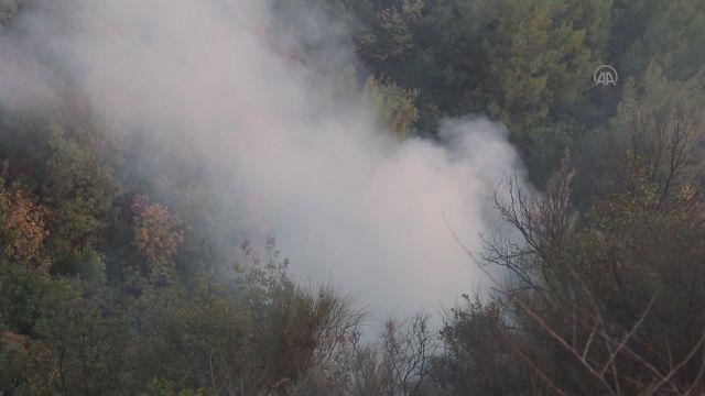HATAY – Bağlık alanda çıkan yangın söndürüldü